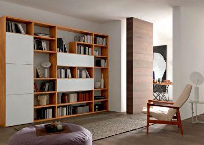 FGF librerie 1