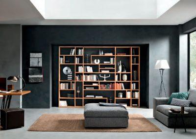 FGF librerie 5
